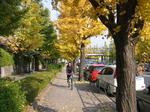 駒沢公園2.jpg