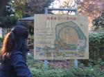 駒沢公園3.jpg