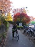 駒沢公園4.jpg