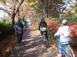 駒沢公園6.jpg
